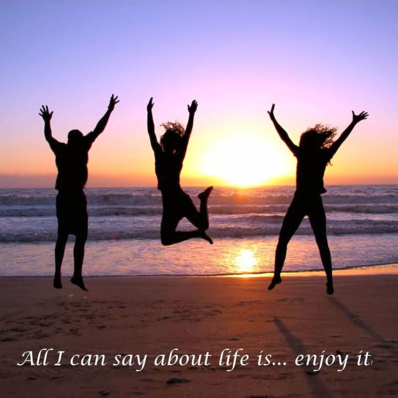 Enjoy Life Quote Quote Number 60 Picture Quotes Mesmerizing Enjoying With Friends Quotes