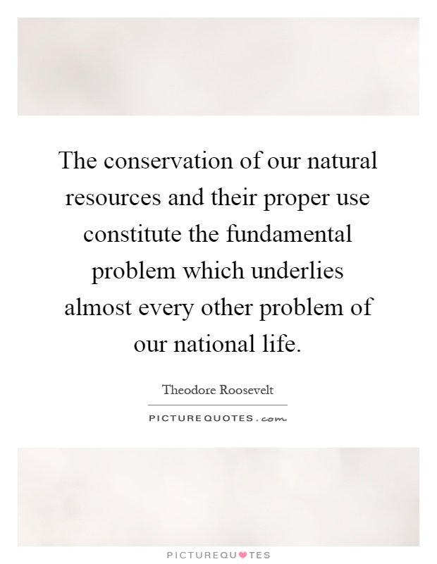 The conservation of our natural resources and their proper use constitute the fundamental problem which underlies almost every other problem of our national life Picture Quote #1
