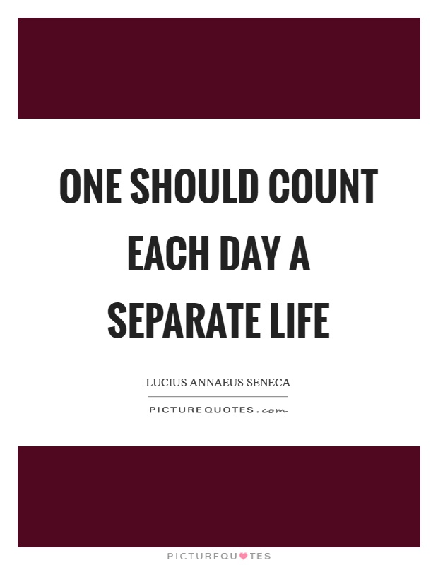 One should count each day a separate life Picture Quote #1