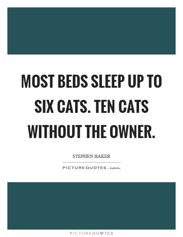 Most beds sleep up to six cats. Ten cats without the owner Picture Quote #1
