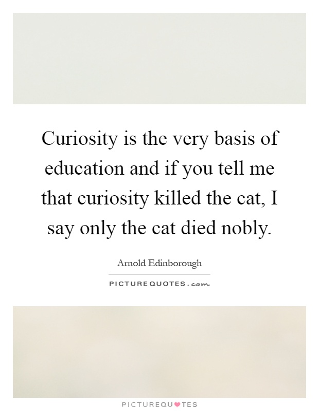 Curiosity is the very basis of education and if you tell me that curiosity killed the cat, I say only the cat died nobly Picture Quote #1