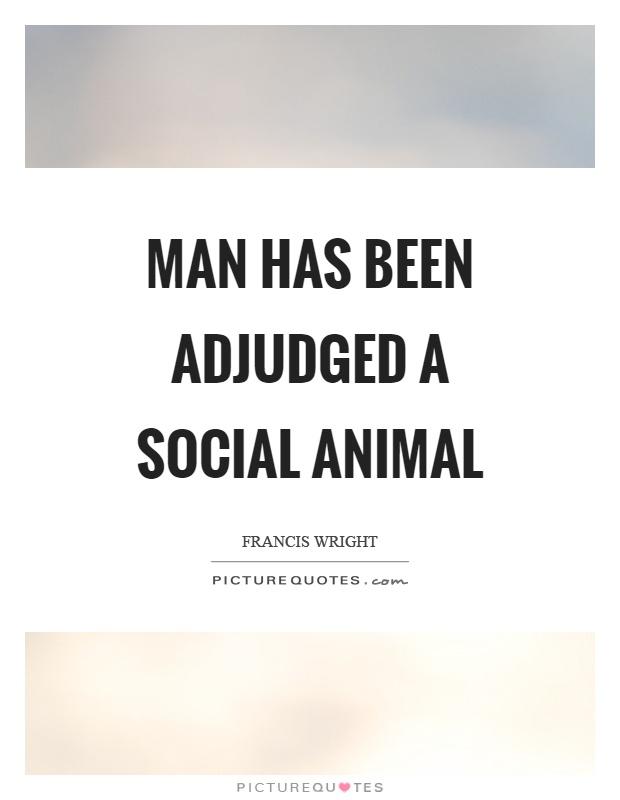 man is a social animal essay