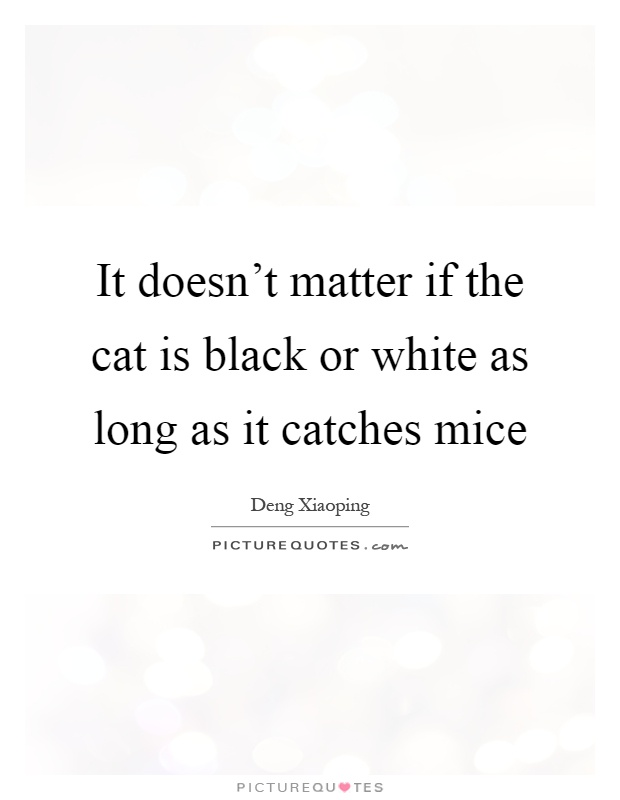It doesn't matter if the cat is black or white as long as it catches mice Picture Quote #1