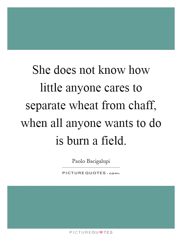 She does not know how little anyone cares to separate wheat from chaff, when all anyone wants to do is burn a field Picture Quote #1