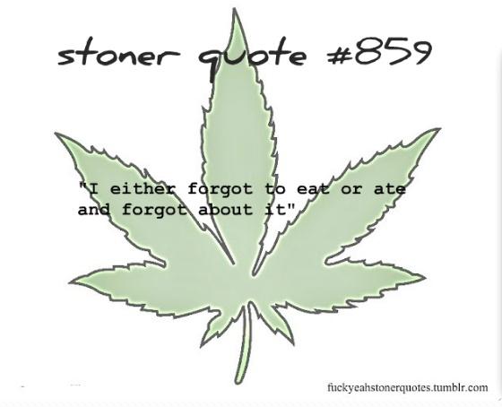 Stoner Quote Picture Quote #1