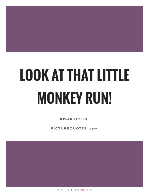 Look at that little monkey run! Picture Quote #1