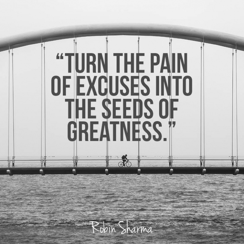 Turn the pain of excuses into the seeds of greatness Picture Quote #1
