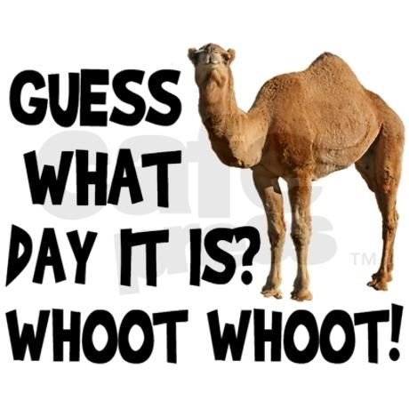 Hump Day Quote Picture Quote #1