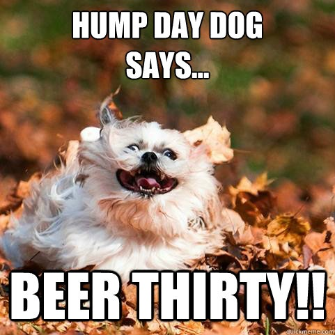 Hump Day Quote By Dogs 5 Picture Quote #1