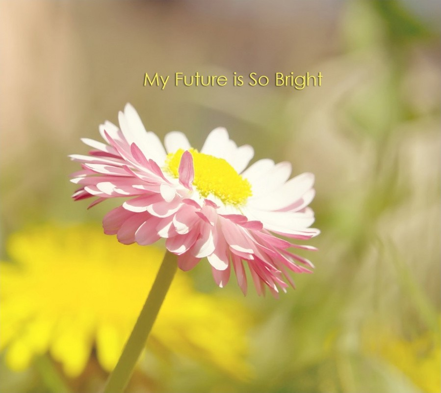 Bright Future Quote 3 Picture Quote #1