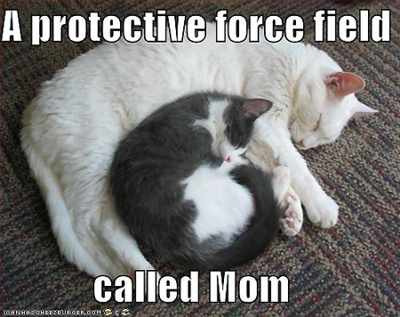 Funny Mothers Day Quote 1 Picture Quote #1