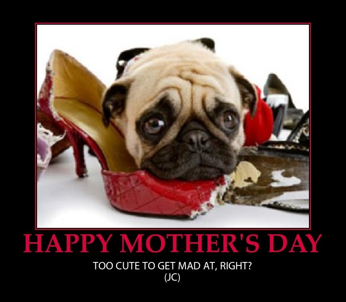Funny Mothers Day Quote 2 Picture Quote #1