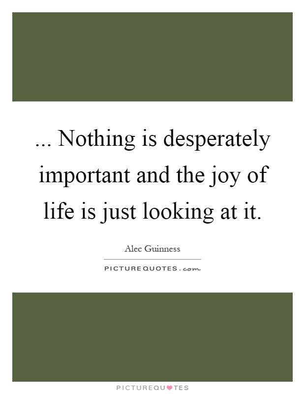 ... Nothing is desperately important and the joy of life is just looking at it Picture Quote #1
