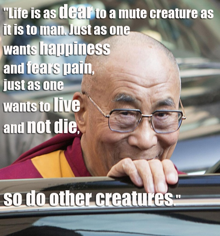 Quote Dalai Lama On Man 1 Picture Quote #1
