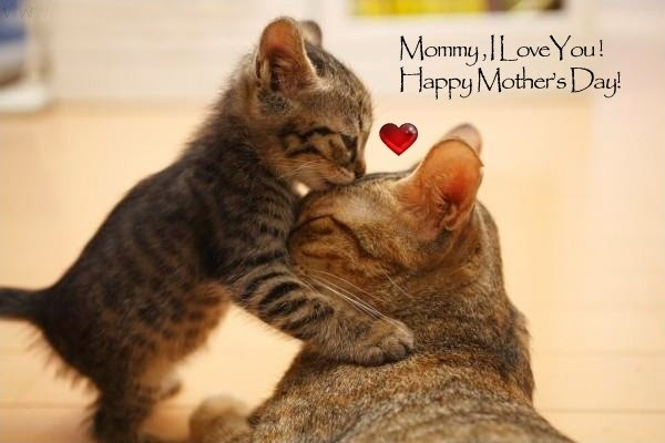 Mommy, I love you! Happy Mother's Day! Picture Quote #1