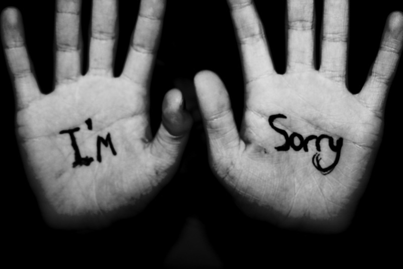 I Am Sorry Quote 3 Picture Quote #1