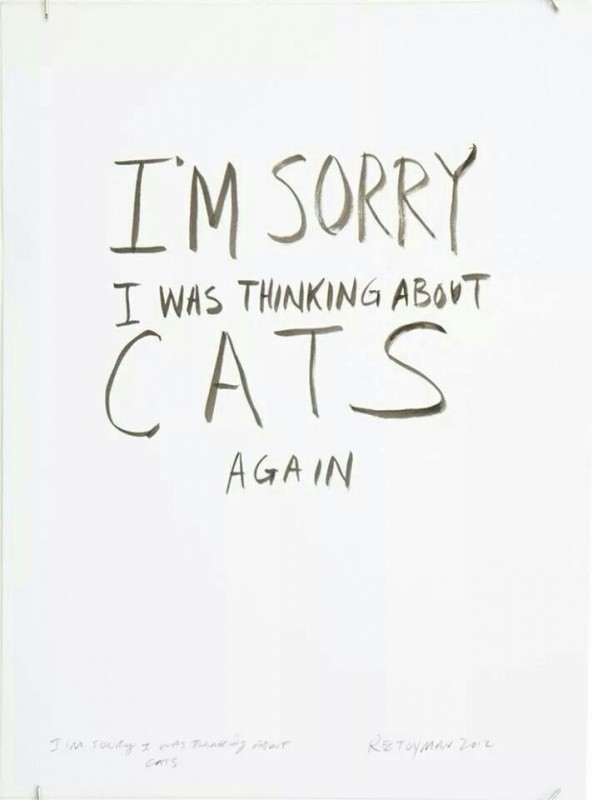 Im Sorry Quote With Cats 1 Picture Quote #1