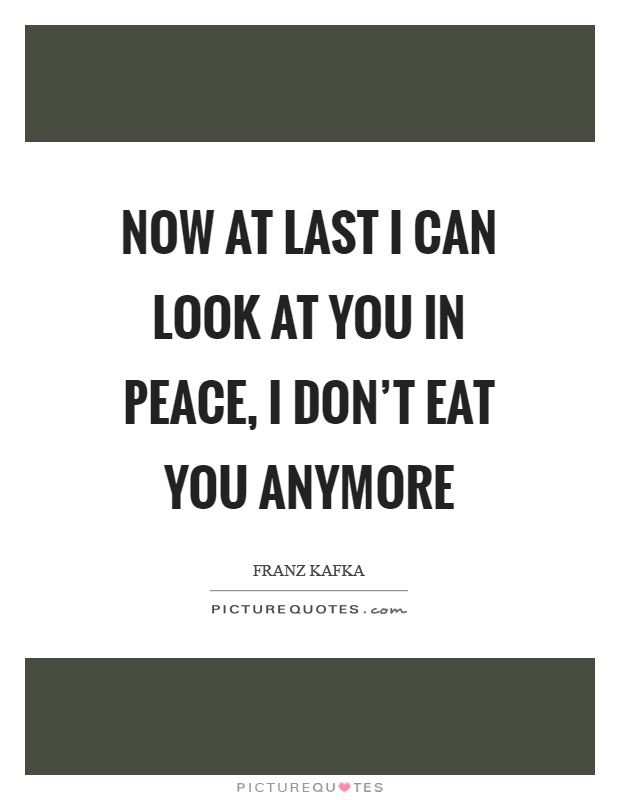 Now at last I can look at you in peace, I don't eat you anymore Picture Quote #1