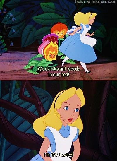 Alice In Wonderland Disney Quote 2 Picture Quote #1
