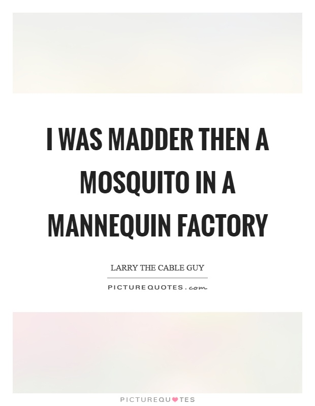 I was madder then a mosquito in a mannequin factory Picture Quote #1