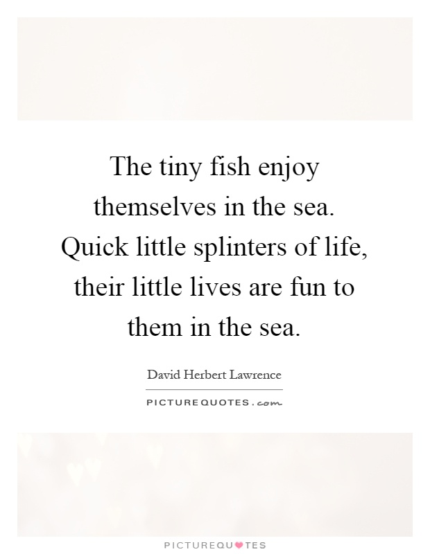 The tiny fish enjoy themselves in the sea. Quick little splinters of life, their little lives are fun to them in the sea Picture Quote #1