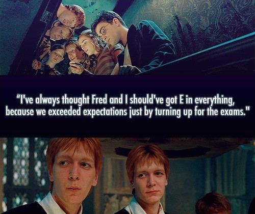 Funny Harry Potter Quotes | Harry Potter Funny Quote Fred And George Quote Number 560965