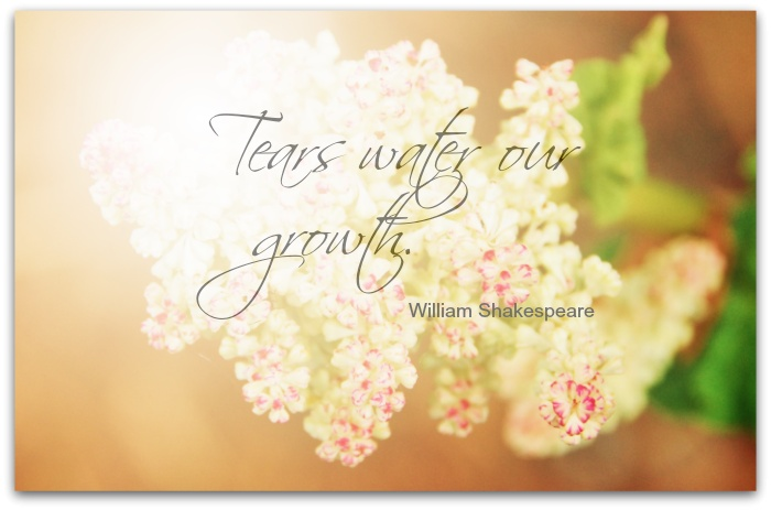 Encouragement And Sympathy Quote 1 Picture Quote #1