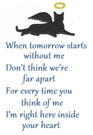 Pet Sympathy Quote 1 Picture Quote #1