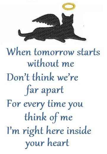 Pet Sympathy Quote 1 Picture Quote #1