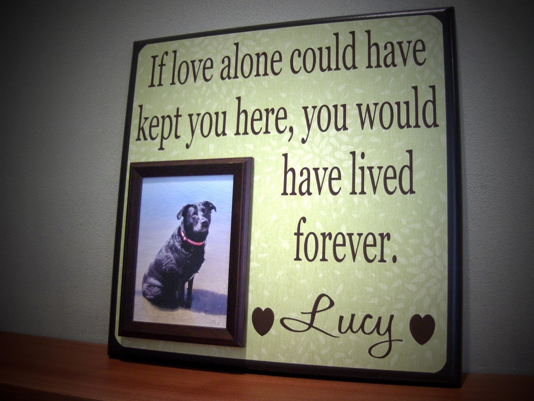 Pet Sympathy Quote 5 Picture Quote #1
