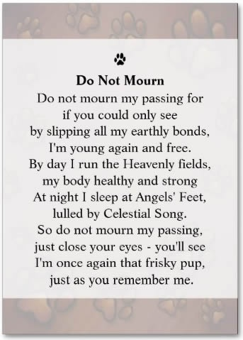 Pet Sympathy Quote Paw Prints 3 Picture Quote #1