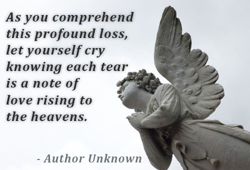 Quote About Losing A Loved One Captivating Sympathy Quote Loss Loved One  Quote Number 561425  Picture Quotes