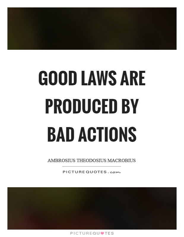 Good laws are produced by bad actions Picture Quote #1