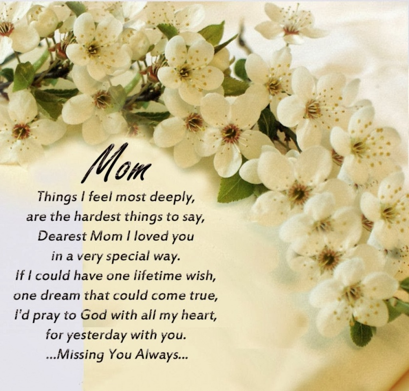 Mother Sympathy Quote 1 Picture Quote #1