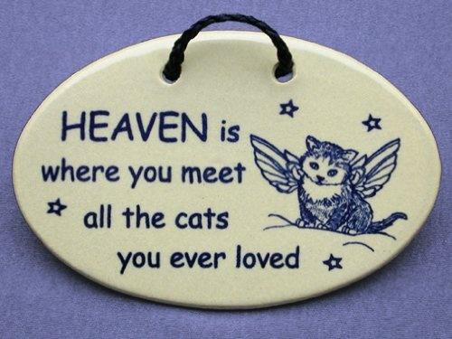 Cat Sympathy Quote 2 Picture Quote #1