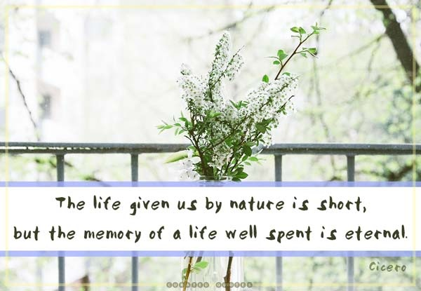 Beautiful Sympathy Quote 1 Picture Quote #1
