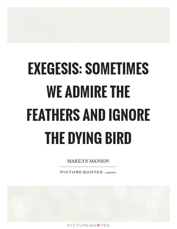 Exegesis: sometimes we admire the feathers and ignore the dying bird Picture Quote #1