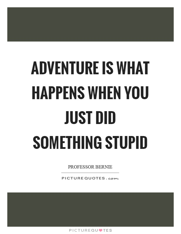 Adventure is what happens when you just did something stupid Picture Quote #1