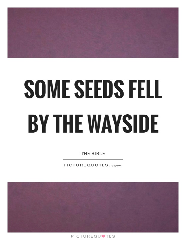 Some seeds fell by the wayside Picture Quote #1