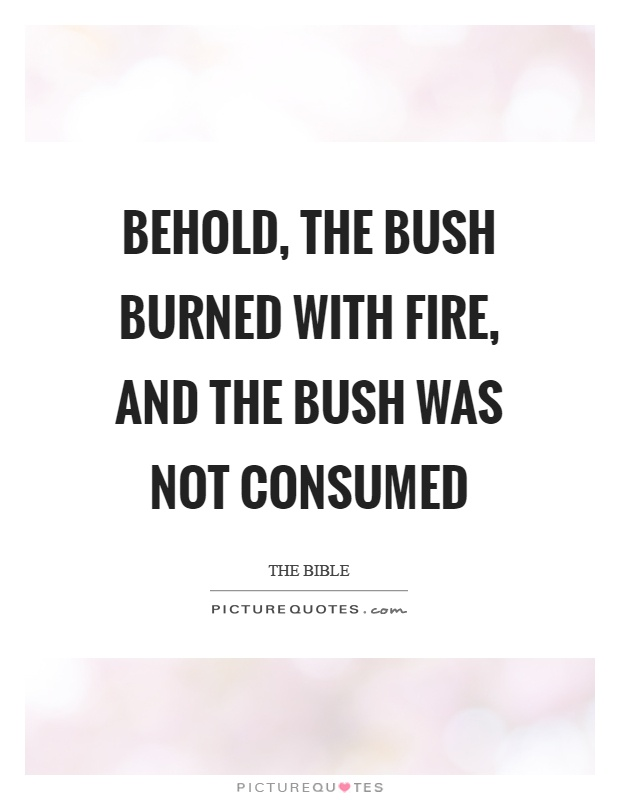 Behold, the bush burned with fire, and the bush was not consumed Picture Quote #1