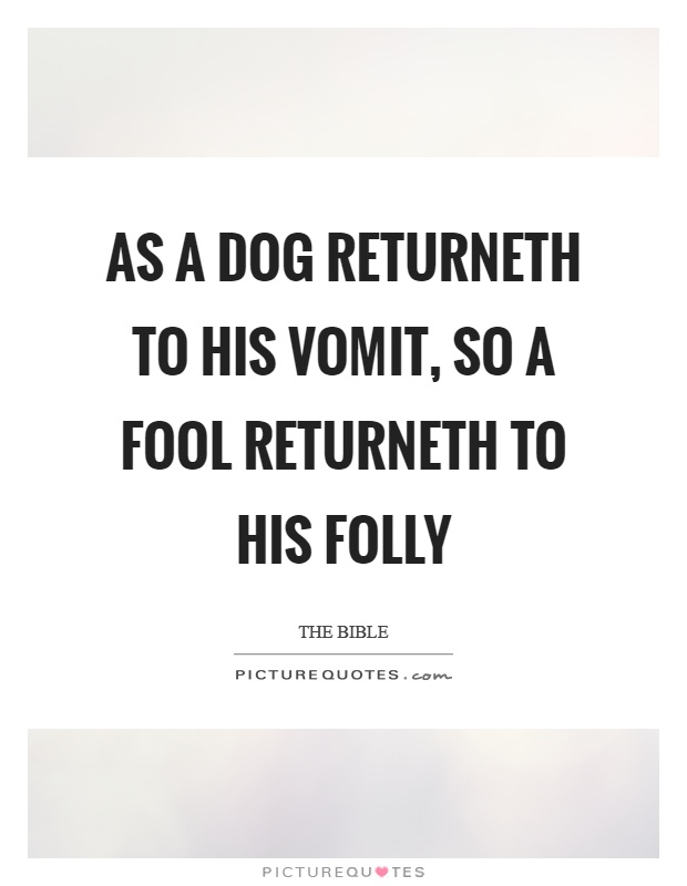 As a dog returneth to his vomit, so a fool returneth to his folly Picture Quote #1