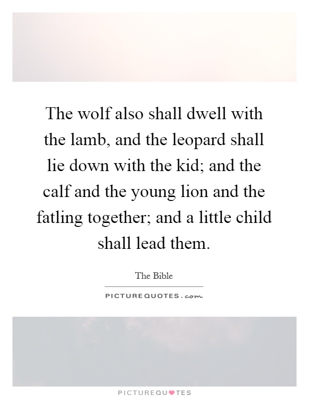 The wolf also shall dwell with the lamb, and the leopard shall lie down with the kid; and the calf and the young lion and the fatling together; and a little child shall lead them Picture Quote #1