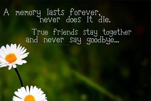 Friends Never Say Goodbye Quote 2 Picture Quote #1