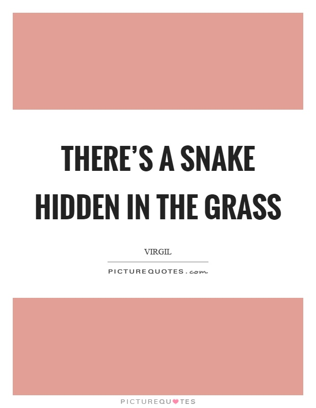 Theres A Snake Hidden In The Grass Picture Quotes
