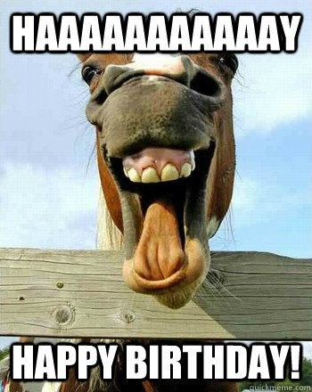 Funny Birthday Quote With Horses 2 Picture Quote #1