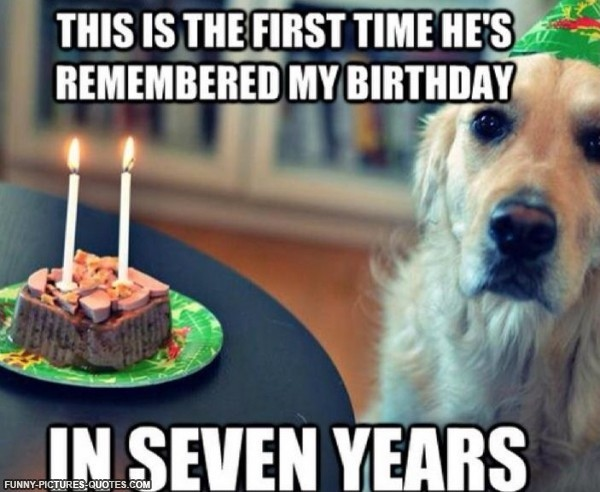 Dog Funny Birthday Quote 1 Picture Quote #1