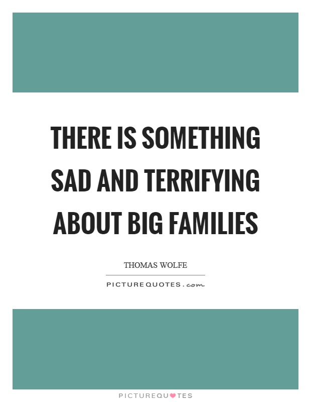 There is something sad and terrifying about big families ...