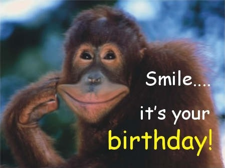 Animal Funny Birthday Quote 3 Picture Quote #1