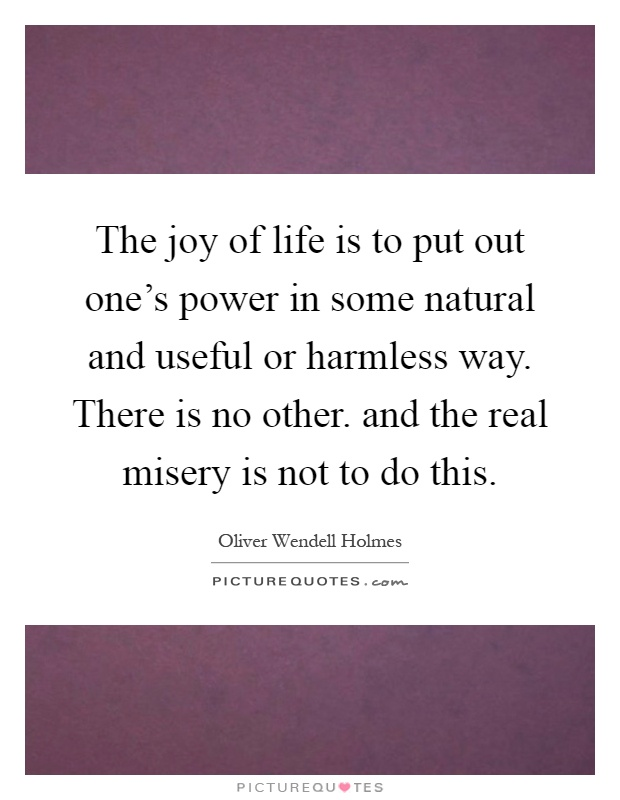 The joy of life is to put out one's power in some natural and useful or harmless way. There is no other. and the real misery is not to do this Picture Quote #1