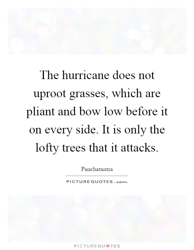 The hurricane does not uproot grasses, which are pliant and bow low before it on every side. It is only the lofty trees that it attacks Picture Quote #1